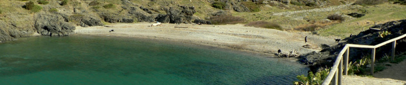 Photo of the Tamarina Beach
